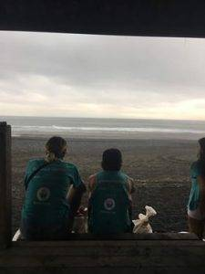cleaning beaches in the rain