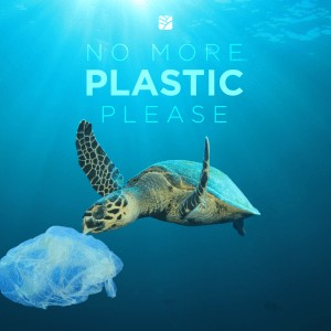 No more plastic please - turtle and a plastic bag in the sea