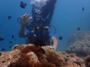 Diver touching coral for balance