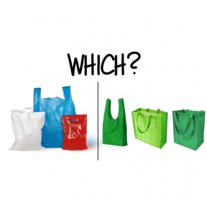 Which - plastic vs reusable bags