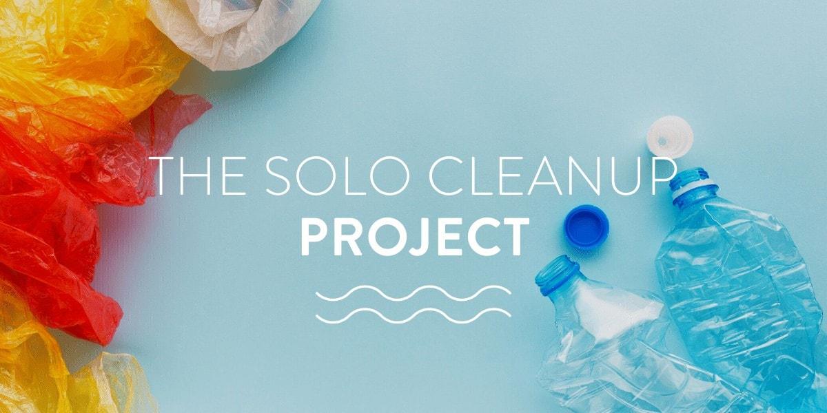 solo cleanup project