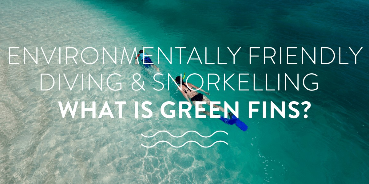 Environmentally Friendly Diving & Snorkelling – What is Green Fins?