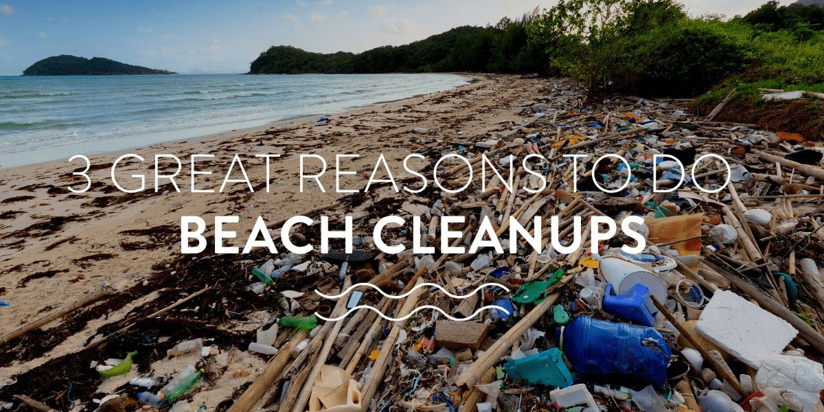 3 great reasons to do beach cleanups