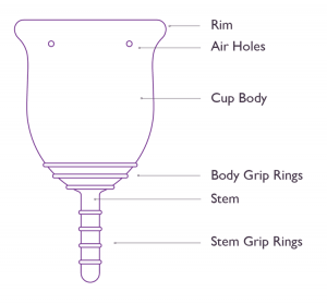 Parts of a menstrual cup diagram