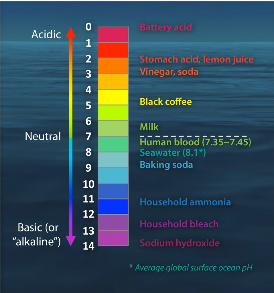 PH scale and where seawater normally falls