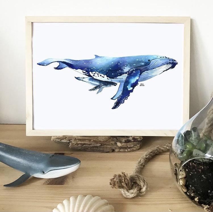 Whale illustration by ocean artist Rena