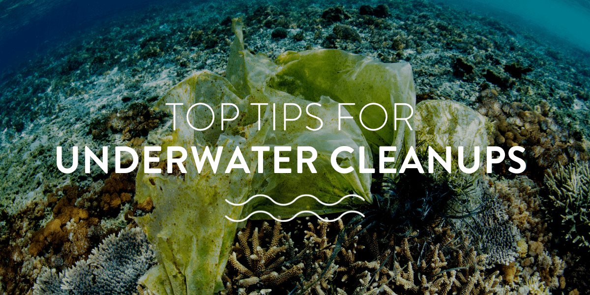 top tips for underwater cleanups