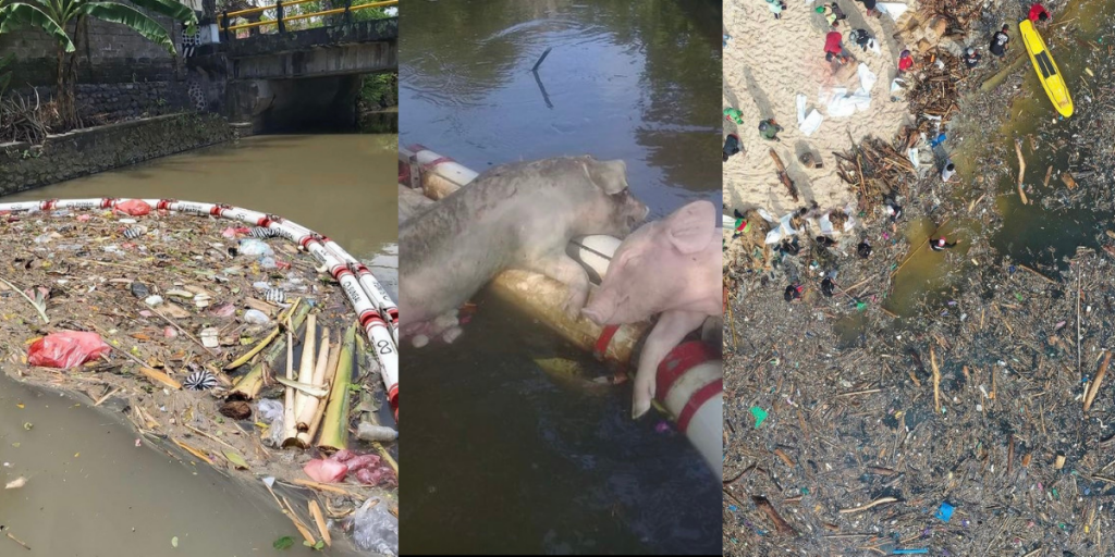 organic and plastic waste polluting rivers in Bali